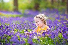 Happy toddler girl in bluebell flowers in spring forest. Adorable toddler girl with curly hair wearing a yellow dress playing with purple bluebell flowers in a Royalty Free Stock Images