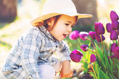 Happy toddler girl in a hat playing with purple tulips. Outside in spring Stock Image