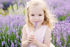 Happy toddler girl. In lavender field Royalty Free Stock Photography