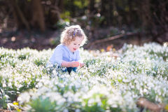 Happy toddler girl playing with first spring flowers Stock Photography
