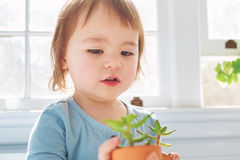 Happy toddler girl playing with potted plants Stock Photography