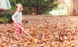 Happy toddler girl raking leaves Stock Photography