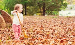 Happy toddler girl raking leaves Royalty Free Stock Photo