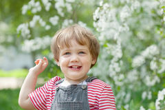 Happy toddler   in spring Royalty Free Stock Image