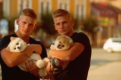 Always happy together. Muscular men with dog pets. Happy family on walk. Twins men hold pedigree dogs. Happy twins with. Muscular look. Spitz dogs love the stock images