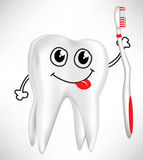 Happy tooth holding toothbrush Stock Photo