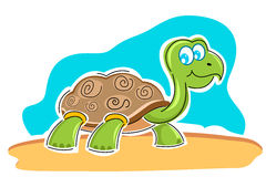 Happy tortoise Royalty Free Stock Photography