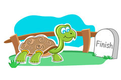 Happy tortoise with finish stone Royalty Free Stock Image