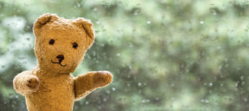 Happy toy bear Stock Images