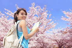 Happy travel woman with sakura tree Royalty Free Stock Photos