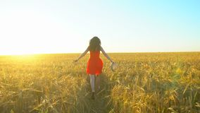 Happy traveler young hispanic beautiful woman running on wheat field in sunset summer. Freedom health happiness tourism