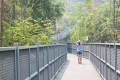 Happy traveller raise up her hands among walking. On Canopy Walks, Queen Sirikit Botanic Garden Royalty Free Stock Image