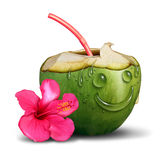 Happy Tropical Drink Concept Royalty Free Stock Photography