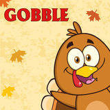 Happy Turkey Bird Cartoon Character Stock Images