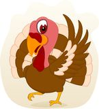 Happy Turkey Standing Royalty Free Stock Photography