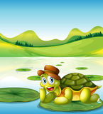 A happy turtle above the floating waterlily Royalty Free Stock Photo