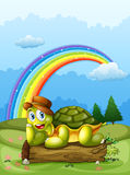 A happy turtle above log and the rainbow in sky Stock Photos