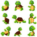 Happy turtle cartoon collection set Royalty Free Stock Photography