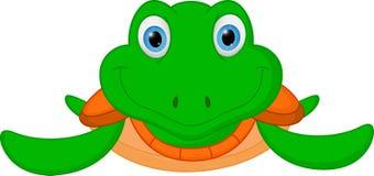 Happy turtle cartoon Stock Image