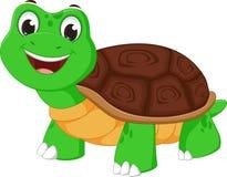 Happy turtle cartoon Royalty Free Stock Image