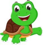 Happy turtle cartoon Stock Images