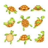 Happy turtle icons set, cartoon style stock illustration