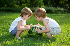 Happy Twin Brothers Playing with Watermelon on Green Grass in Summer Park Royalty Free Stock Images