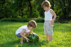 Happy Twin Brothers Playing with Watermelon on Green Grass in Summer Park Stock Photo