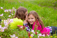 Happy twin sister girls playing whispering ear in meadow Stock Image