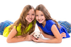 Happy twin sister kid girls and puppy dog lying. Playing on white background stock photo