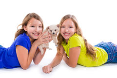 Happy twin sister kid girls and puppy dog lying. Playing on white background royalty free stock photo