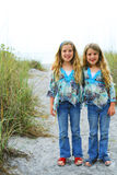 Happy twin sisters on the beach vertical Stock Image