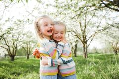 Little twins hug and laugh. stock photo
