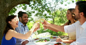 Happy two couples toasting wine glasses. At outdoor restaurant stock footage