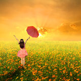 Happy umbrella woman jumping in flower garden and sunset Royalty Free Stock Images