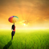 Happy umbrella woman jumping in green rice field and sunset Royalty Free Stock Photos