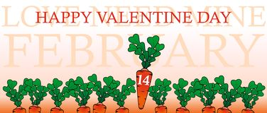 Happy valentine day with a carrots Royalty Free Stock Photography