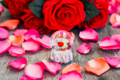 Happy valentine. Love surrounding by red rose Royalty Free Stock Images