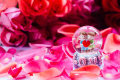 Happy valentine. Love surrounding by red rose royalty free stock photo
