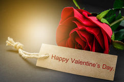 Happy valentine`s day card with red rose. Royalty Free Stock Images