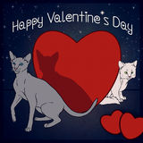 Happy Valentine`s Day - Cats collection Stock Image