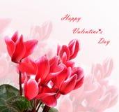 Happy Valentine`s Day celebration Stock Image