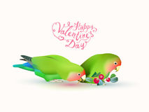 Happy valentine`s day! Fischer`s lovebirds. Pair of parrots and hand written inscriptions Royalty Free Stock Image