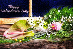 Happy Valentine's Day, flowers, window Stock Photography