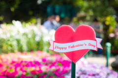 Happy Valentine's day in the red heart on blurred flower garden, Royalty Free Stock Images