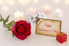 Happy Valentine`s day text on greeting card with single red rose and candle lights. With pastel colors royalty free stock photos