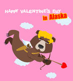 Happy Valentines day. Bear Cupid with bow. Angel wild beast. Stock Photos