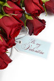 Happy Valentines Day bouquet of red roses Royalty Free Stock Photos