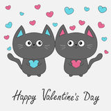 Happy Valentines Day. Gray contour cat couple family holding pink blue heart. Cute cartoon character. Kawaii animal Pet collection Royalty Free Stock Images