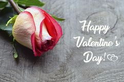 Happy Valentines Day greeting card. Beautiful pink rose on old wooden background.St Valentine`s Day or Love concept. Selective focus Stock Photos